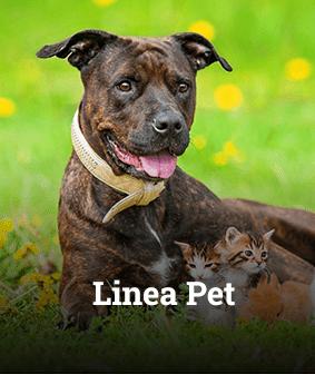 box linea pet