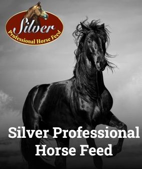 Silver Professional Horse Feed